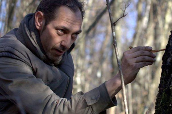 Organic birch sap