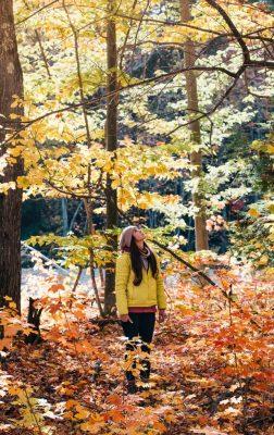 5 idées de randonnées sous les feuilles d'automne